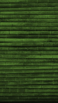 background for galaxy s4 with green bamboo texture